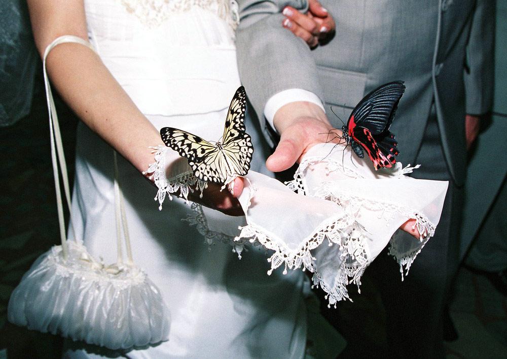 Вишлист на свадьбу: что подарить молодым - фото №7