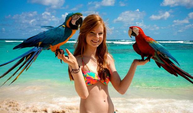 Как научить попугая разговаривать - фото №1