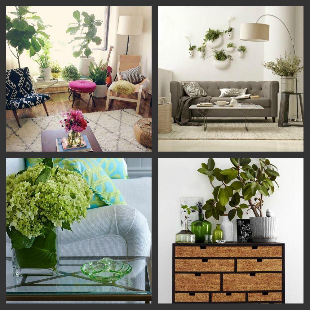 8 способов освежить интерьер с помощью растений - фото №4