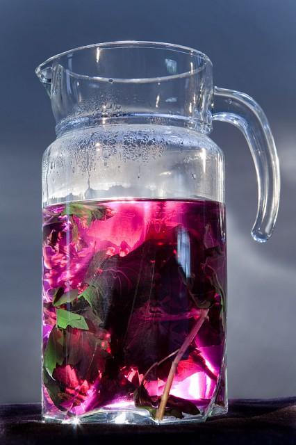 Топ 5 домашних напитков, утоляющих жажду в жару - фото №1