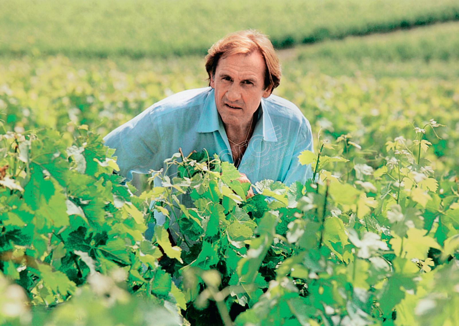 Жерар Депардье - фото №8