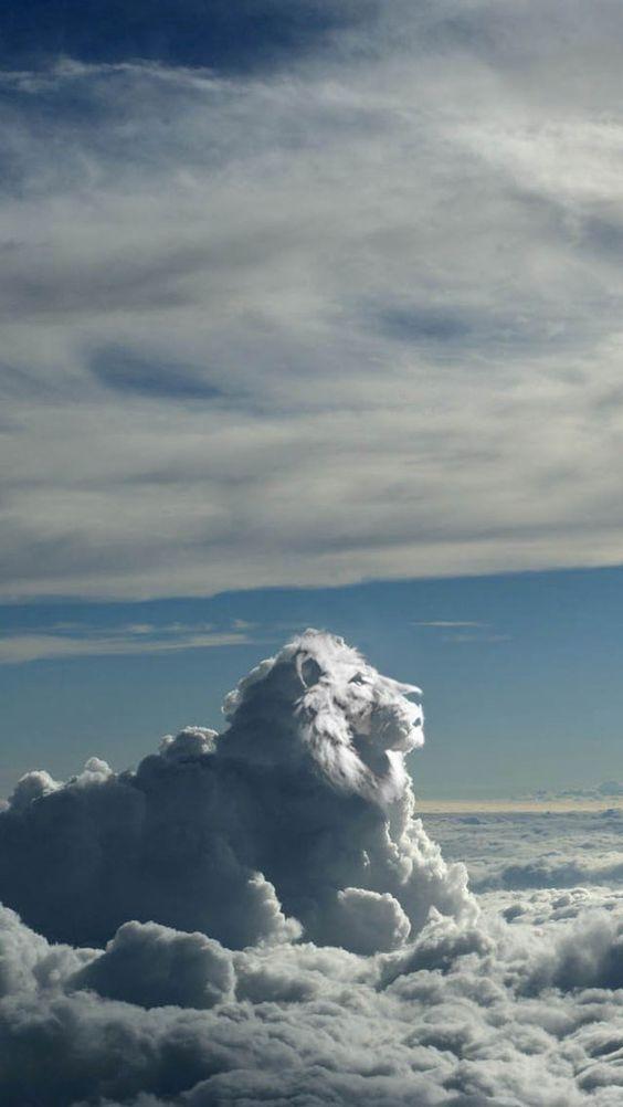 Во время затмения Солнце будет находиться в знаке Льва