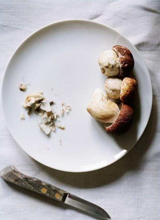 Белые грибы лучше замораживать сырыми