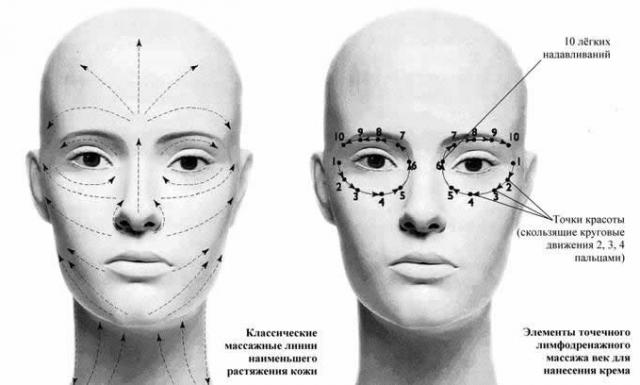 Как правильно наносить крем на лицо по массажным линиям - фото №3