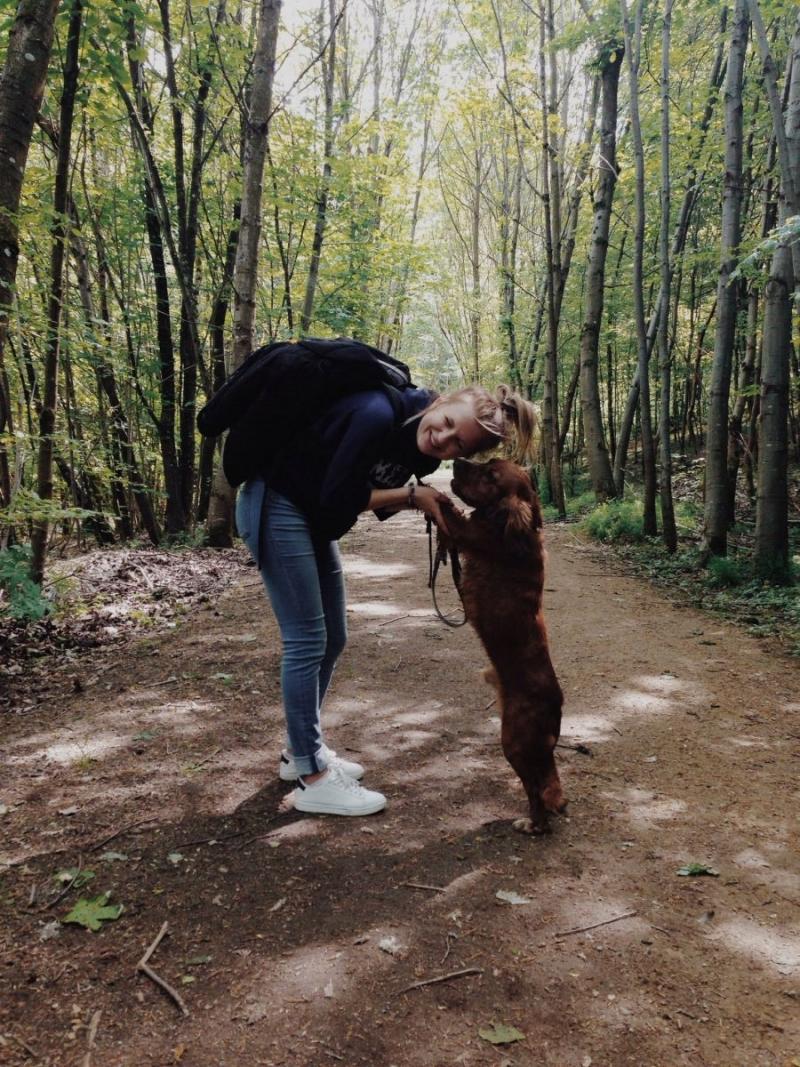 люксембург девушка собака