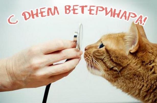 день ветеринара открытка