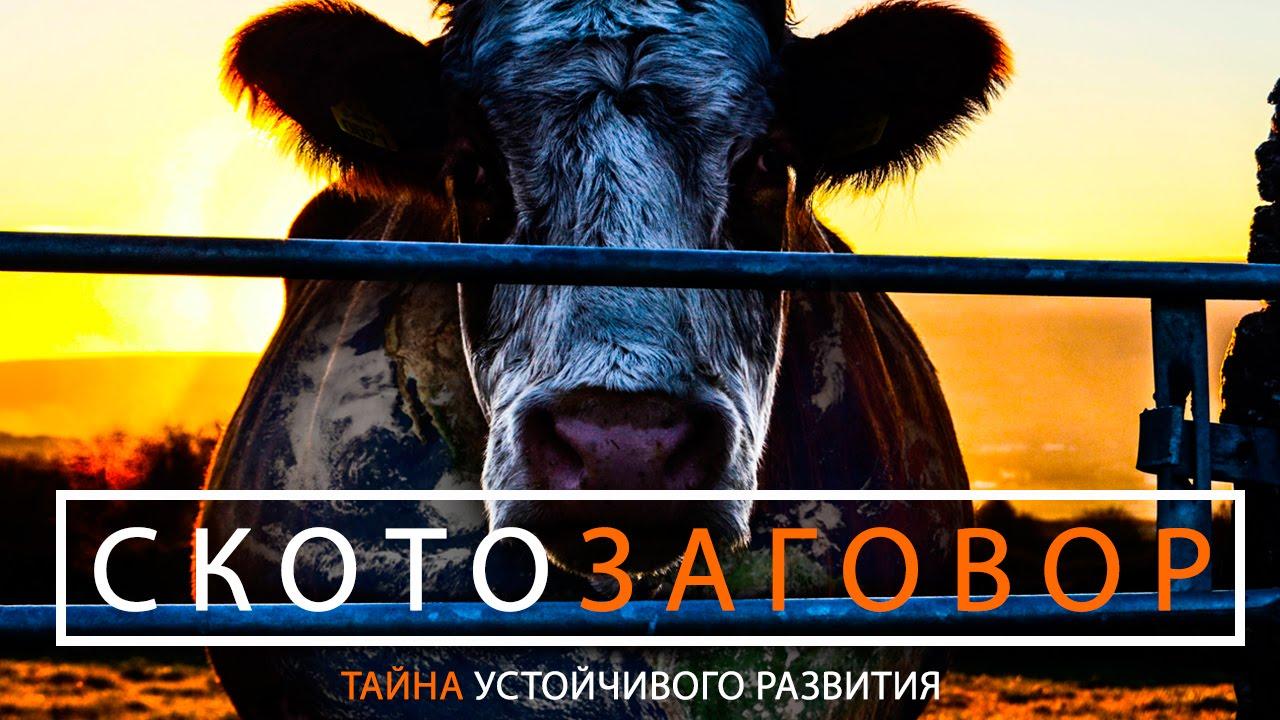Скотозаговор скотоводство