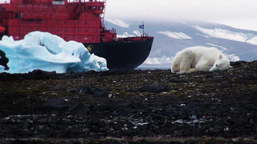 7 must-see экологических фильмов 2017 года о мире, в котором мы живем - фото №6