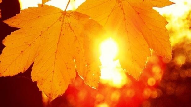 ритуалы на день осеннего равноденствия