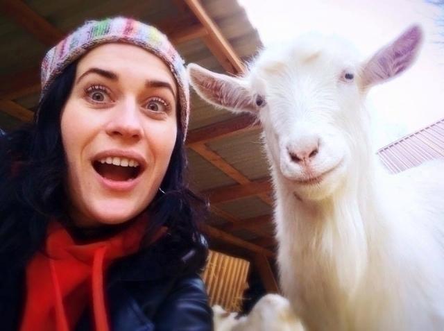 Как открыть свою сыроварню: бизнес-история Татьяны Дядечко - фото №5