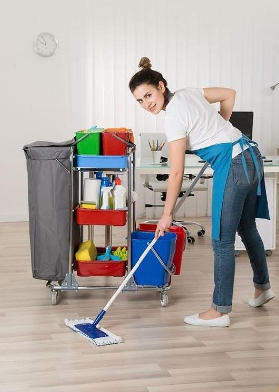Влажная уборка защитит от аллергии