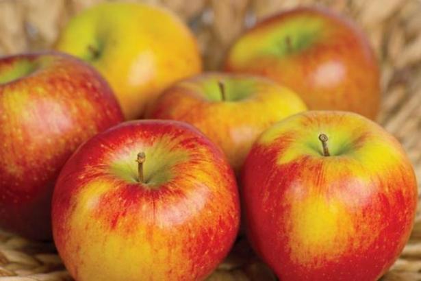 запреты на яблочный спас