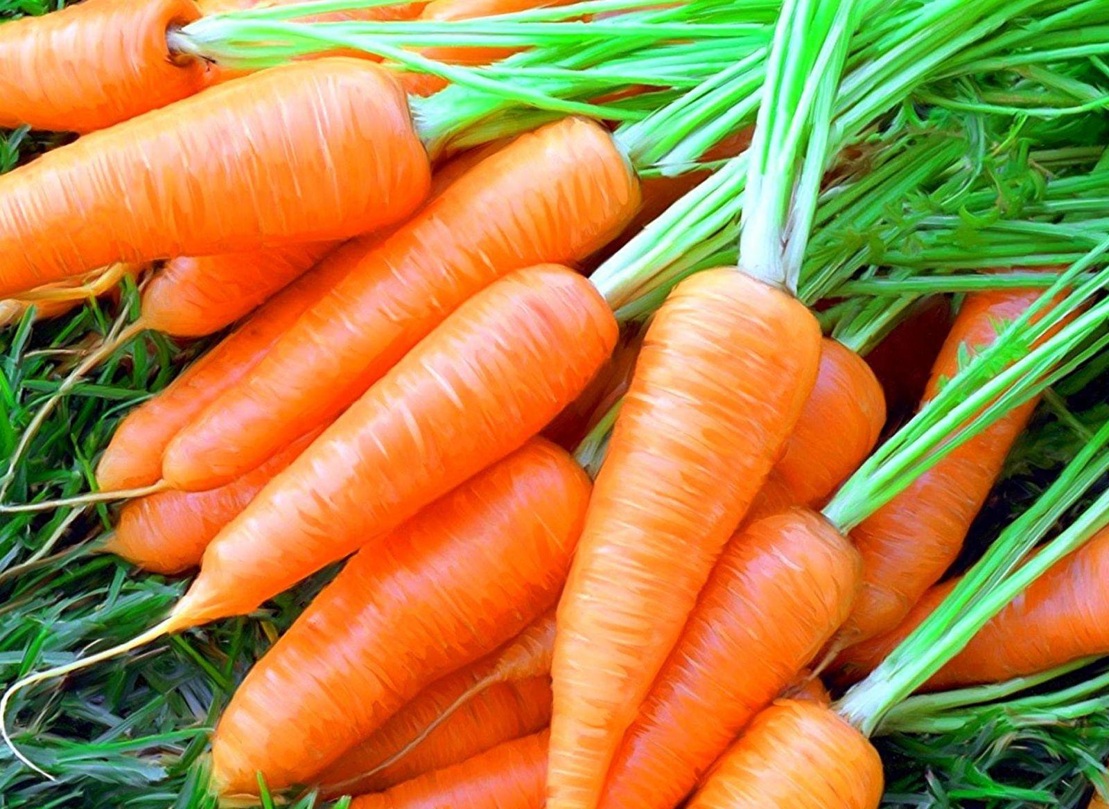 морковные котлеты