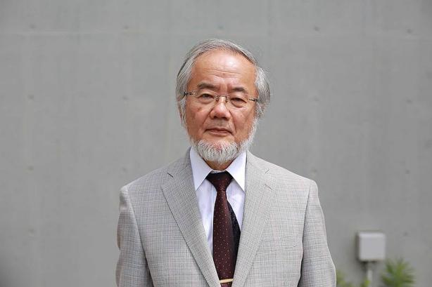 нобелевский лауреат 2016