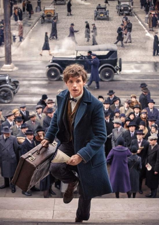 «Фантастические твари и где они обитают»: впечатления от фильма, во время которого не нужно вспоминать Гарри Поттера - фото №5
