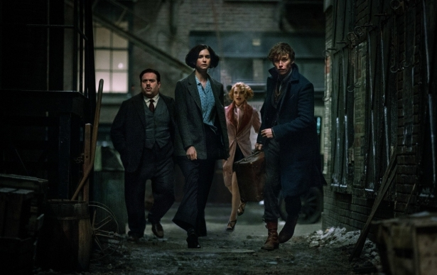 «Фантастические твари и где они обитают»: впечатления от фильма, во время которого не нужно вспоминать Гарри Поттера - фото №4