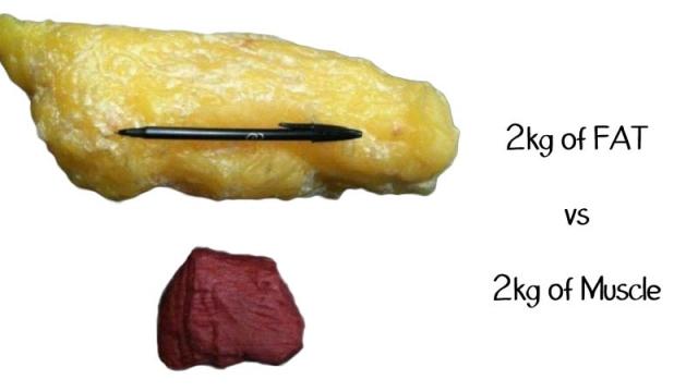 Что делать, когда объемы уходят, а вес стоит на месте (+МНЕНИЕ ЭКСПЕРТА) - фото №2