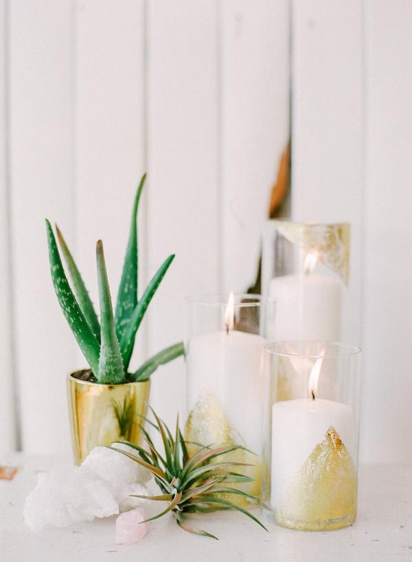 Как использовать алоэ вера: 8 ситуаций, когда это комнатное растение выручит - фото №4