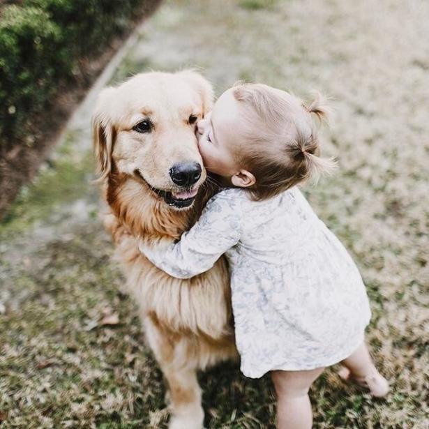 почему стоит завести собаку