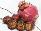 Топ-7 самых полезных экзотических фруктов