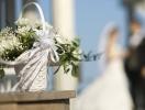 Лукбук новой свадебной коллекции. Фото