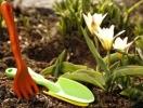 Топ 8 советов цветоводам-любителям