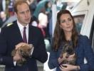 VeryFirstTo предлагает совершить вояж по маршруту королевской семьи