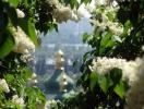 Майские праздники в Украине: афиша мероприятий