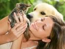 Исследователи поделили мир на любителей кошек и собак