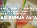 Что попробовать в августе: арбузный фреш и профитроли в Желтке