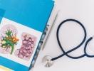 Болезни печени и желчевыводящих путей: причины, симптомы и эффективное лечение