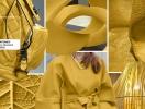 Единство силы, уверенности и сложности: Институт Цвета Pantone назвал цвета осени 2016