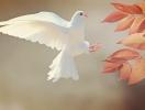 Вознесение господне 2019: традиции и приметы праздника Вознесения Господня