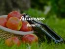 Рецепт домашнего вина из яблок: как приготовить вкусный сидр всего из двух ингредиентов