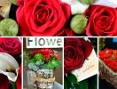 Оригинальный подарок – цветы с доставкой от UFL