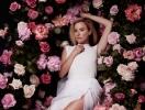 Первый на Подоле цветочный фестиваль PODIL FLOWER MARKET приглашает на Контрактовую площадь 22 и 23 апреля