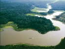 Леса Амазонки скоро полностью исчезнут