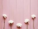 Исследование мазка у женщин: кому нужно проходить и что показывает