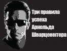 В заметки: три правила успеха Арнольда Шварценеггера