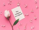 Что подарить на 8 Марта: универсальные идеи подарков