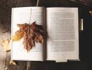 Інтелектуальна осінь: книжкові новинки вересня