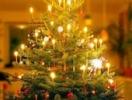 Новогодняя мода 2007 для елки и дома