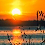 Сегодня день летнего солнцестояния: что можно и нельзя делать