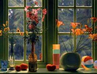 Топ 6 правил ухода за комнатными растениями