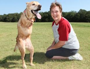 Двулапая собака борется за права инвалидов