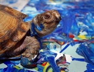 Открылась выставка животных-художников