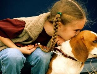 От астмы ребенка защитит… собака