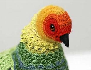 Экзотическое хобби: вязание одежды для птиц