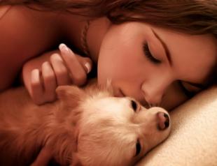 Целовать домашних животных опасно для здоровья