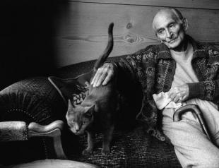 Великие художники и их коты. Фото